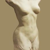 Donna nascente, gesso, 2017 (1)